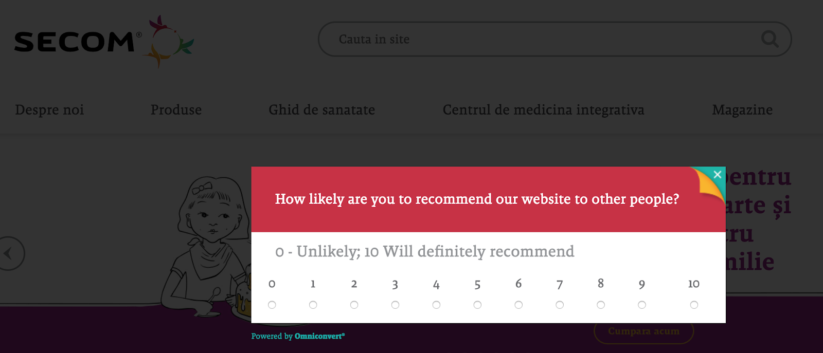 how to create a customer survey